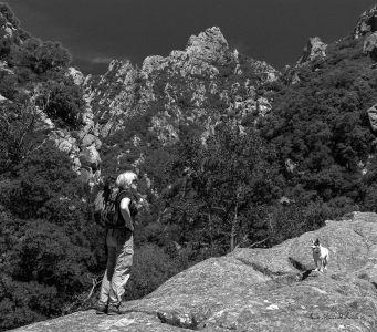 Gorges15NBsigne